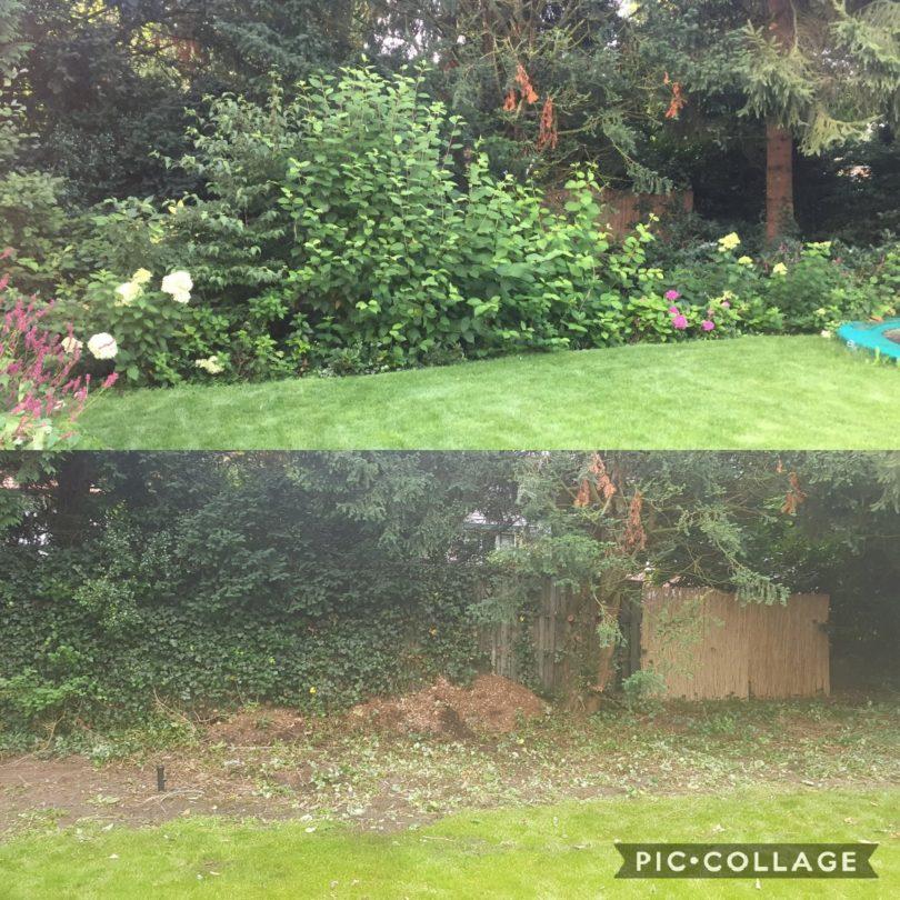 Tuin Beplanting Verwijderen en Afvoeren